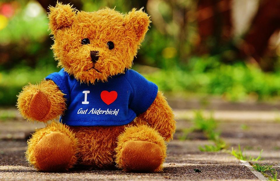 medvidek v tričku